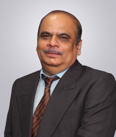 Mr. Narendra Tambe, Business Unit Head